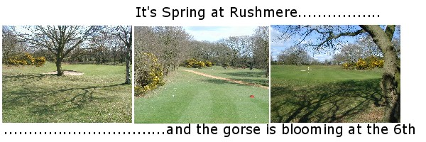 Spring at Rushmere
