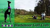 Blackmoor Golf Club, Hampshire